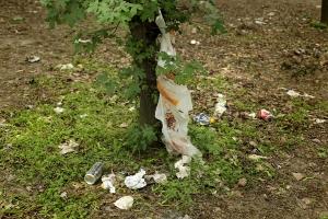 Verschmutzer Wald auf der Donauinsel Wien