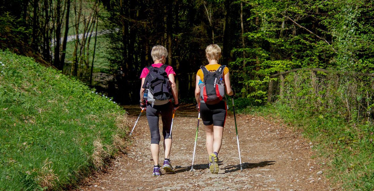 Zwei Damen beim Nordic Walking im Wald