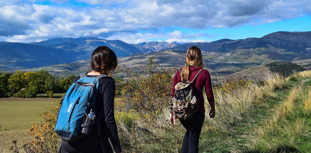 Frauen wandern auf Wiesenweg