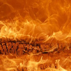 Feuertypen benötigen beim Sport Geselligkeit und Miteinander