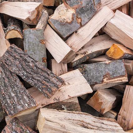 Holz ist eine sehr aktive, expansive Energie, die sich verausgaben muss